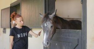 La giovane donna accarezza un cavallo stock footage