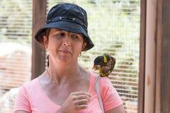 La giovane donna alimenta i pappagalli allo zoo australiano Gan Guru in kibbutz Nir David, in Israele Fotografie Stock