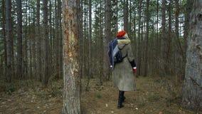 La giovane donna attraente con il cappello rosso vaga in foresta che tocca l'albero archivi video