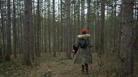 La giovane donna attraente con il cappello rosso vaga in foresta che tocca l'albero stock footage