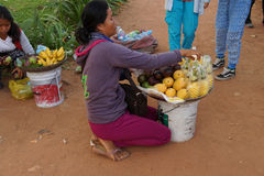 La giovane donna cambogiana vende la frutta Immagine Stock Libera da Diritti