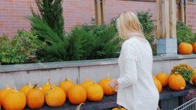 La giovane donna compra le zucche a Halloween Tradizioni americane ed acquisto festivo archivi video