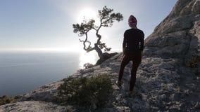 La giovane donna considera i fasci del sole attraverso i rami di un pino su una montagna sopra Mar Nero in Crimea Signora sul archivi video