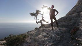 La giovane donna considera i fasci del sole attraverso i rami di un pino su una montagna sopra Mar Nero in Crimea Signora sul stock footage