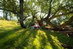 La giovane donna dai capelli rossi che fa l'yoga si esercita in natura in abiti sportivi al sole nel legno immagine stock