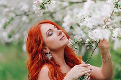 La giovane donna dai capelli rossi felice sta nel meleto sbocciante, fine su immagini stock libere da diritti