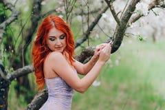 La giovane donna dai capelli rossi felice sta nel meleto sbocciante immagine stock libera da diritti