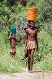 La giovane donna di Himba porta un secchio Immagini Stock