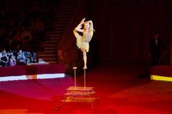 La giovane donna di plastica flessibile esegue con il numero artistico sull'arena Immagine Stock