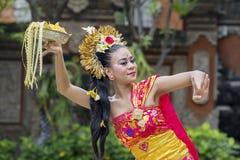 La giovane donna esegue il ballo tradizionale di balinese immagini stock libere da diritti