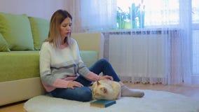 La giovane donna graziosa in rivestimento e jeans rosa bianchi delicati si siede su tappeto beige rotondo nel gatto rosso bianco  stock footage