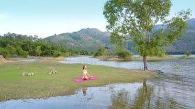 La giovane donna medita su stuoia contro paesaggio verde stock footage