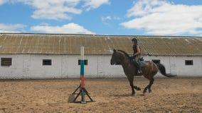 La giovane donna salta il cavallo sopra un ostacolo durante il suo addestramento in un'arena stock footage