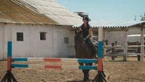La giovane donna salta il cavallo sopra un ostacolo durante il suo addestramento in un'arena archivi video