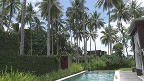 La giovane donna snella ha un resto nello stagno nella località di soggiorno tropicale sotto le palme archivi video