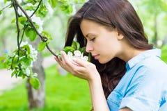 La giovane donna sta odorando il fiore della mela Immagini Stock Libere da Diritti