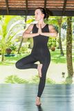 La giovane donna sta praticando l'yoga e i pilates sulla natura Fotografia Stock Libera da Diritti