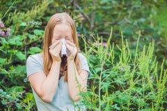 La giovane donna starnutisce a causa di un'allergia all'ambrosia Immagine Stock Libera da Diritti