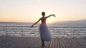 La giovane e bella ballerina balla con garbo sulle sue scarpe di balletto del pointe, lei filatura del ` s Lei tutu bianco d'uso  archivi video
