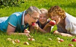 La giovane famiglia morde la mela, bugia su un'erba fotografia stock