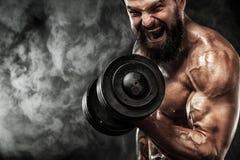 La giovane forma fisica muscolare mette in mostra l'allenamento dell'uomo con la testa di legno nella palestra di forma fisica Fotografia Stock Libera da Diritti