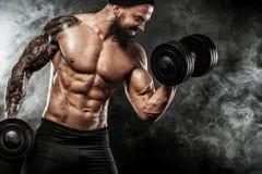 La giovane forma fisica muscolare mette in mostra l'allenamento dell'uomo con la testa di legno nella palestra di forma fisica Fotografia Stock
