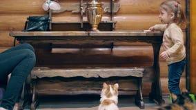 La giovane madre e una piccola figlia dolce stanno giocando con i gattini, sorridenti, c'è una samovar sulla tavola stock footage
