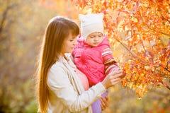La giovane madre mostra le foglie cadute ragazza del bambino sull'albero fotografie stock libere da diritti