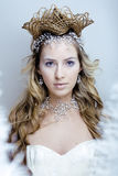 La giovane regina della neve di bellezza con la corona dei capelli sulla sua testa, complica l'acconciatura, concetto dell'invern fotografia stock