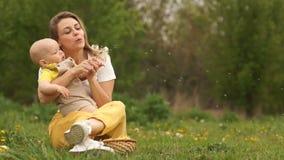 La giovani madre e bambino stanno soffiando i denti di leone mentre si sedevano nel parco sull'erba Festa della mamma, mamma e ba video d archivio