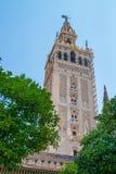 La Giralda of Sevilla. La Geralda, bell tower, of Sevilla, Andalusia, Spain royalty free stock photos