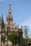 La Giralda and Seville Cathedral. Stock Photography