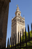 La Giralda Tower Royalty Free Stock Image