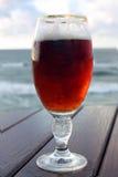 La glace de bière Photographie stock libre de droits