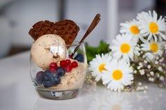 La glace faite maison de banane avec des chia-graines, le yaourt et un chocolat waffle Photos libres de droits