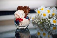 La glace faite maison de banane avec des chia-graines, le yaourt et un chocolat waffle Photographie stock