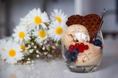 La glace faite maison de banane avec des chia-graines, le yaourt et un chocolat waffle Image libre de droits