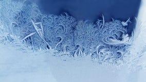 La glace fleurit le fond gelé de fenêtre Modèle texturisé de macro de vue gel de photographie concept froid de Noël de temps d'hi photographie stock libre de droits