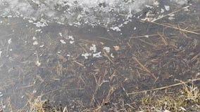 La glace fond sur le lac banque de vidéos