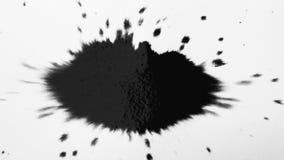 La goccia nera dell'inchiostro schizza sul Libro Bianco L'inchiostro espandentesi sanguina la fioritura su fondo bianco video d archivio