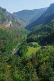La gola del fiume Cesalpina nel Montenegro ha circondato dalle montagne pittoresche europa immagini stock libere da diritti