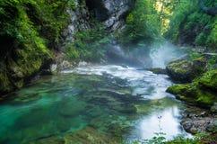 La gola di Vintgar ed il fiume di Radovna con il percorso della passeggiata vicino hanno sanguinato in Slovenia Fotografia Stock Libera da Diritti