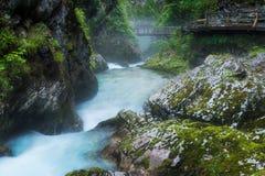 La gola di Vintgar ed il fiume di Radovna con il percorso di camminata e le rocce vicino hanno sanguinato in Slovenia Immagini Stock