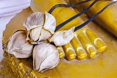 La goma secada del loto en la estatua de Buda se alza Fotografía de archivo