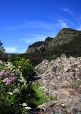 La Gomera, Fotografía de archivo