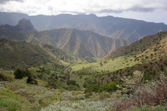LA GOMERA, SPAIN: Mountainous and green landscape with terraced fields between Agulo and Vallehermoso stock images