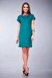 La gonna della blusa della cima del vestito di vestito da bello giovane di affari della donna dei capelli trucco castana sexy di  Fotografie Stock Libere da Diritti