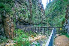 La gorge de Karangahake se trouve entre les chaînes de Coromandel et de Kaimai, à l'extrémité du sud du Coromandel, rivière Image libre de droits