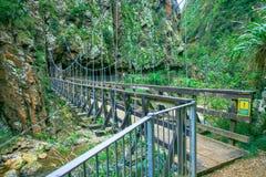 La gorge de Karangahake se trouve entre les chaînes de Coromandel et de Kaimai, à l'extrémité du sud du Coromandel, rivière Photo stock