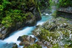 La gorge de Vintgar et la rivière de Radovna avec le chemin de marche et les roches près ont saigné en Slovénie image libre de droits